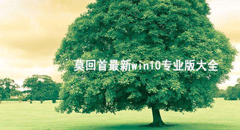 莫回首最新win10专业版大全
