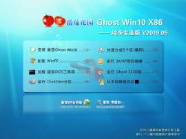 番茄花园 Win10 32位 纯净专业版系统 V2019.05
